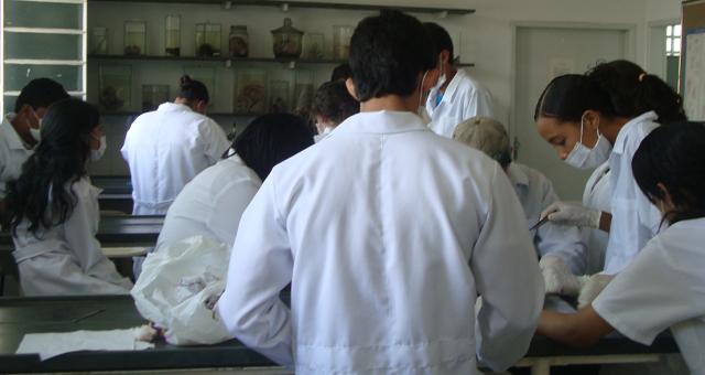 Equipe Laboratório de Preparação e Taxidermia-Unimontes